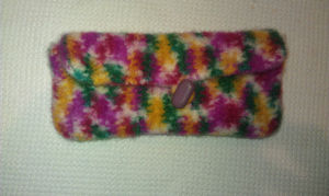 felted crochet hook case